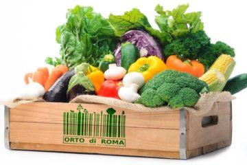 Box Frutta Verdura Roma Orto
